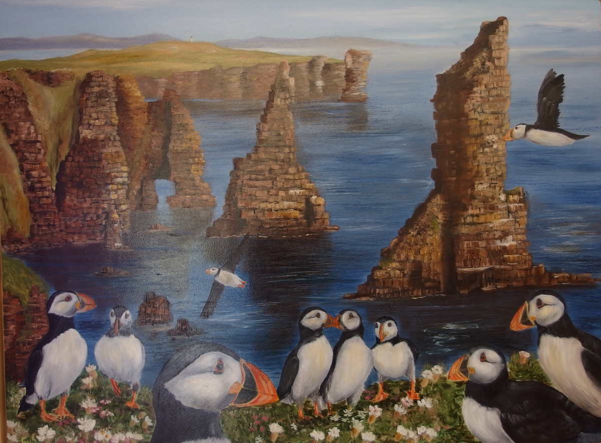Puffins bij Duncansby Stacks